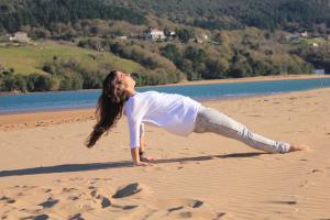 Pilates Leg pull Back 1